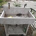 第2層水槽.jpg