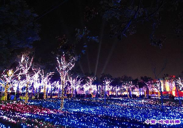 2015台灣燈會-烏日高鐵 (146).jpg