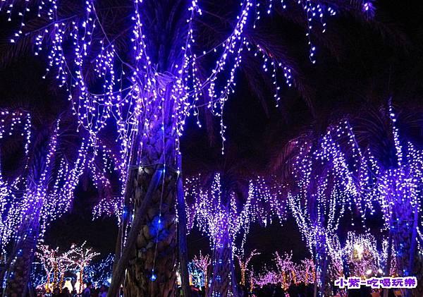 2015台灣燈會-烏日高鐵 (147).jpg