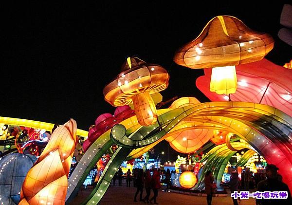 2015台灣燈會-烏日高鐵 (75).jpg