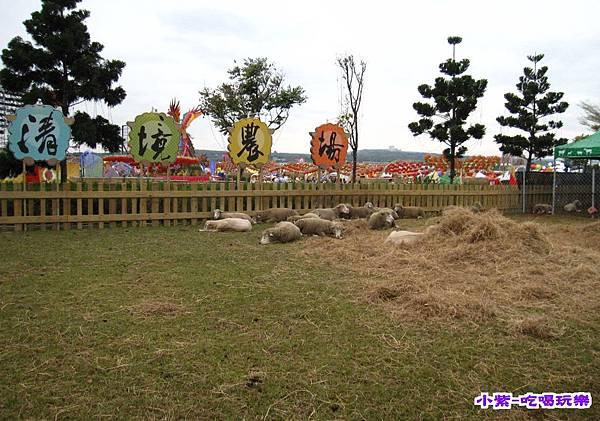 清境農場綿羊 (1).jpg