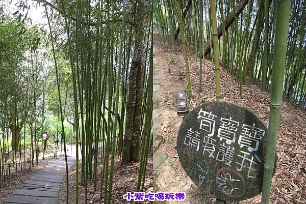 桂竹步道.jpg