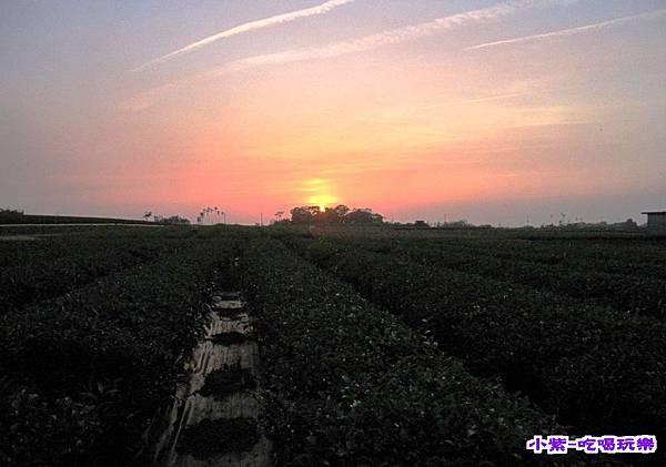 夕陽 (2).jpg