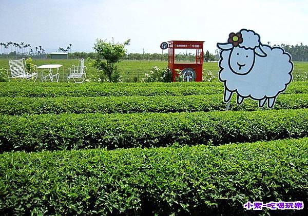茶二指故事館 (55).jpg