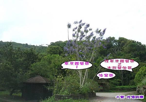 左邊涼亭 草皮.jpg