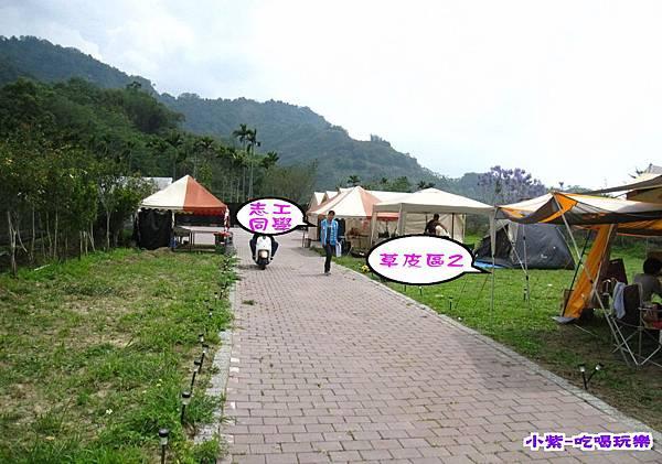 草皮2 (2).jpg