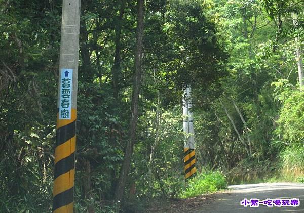 上山 (1).jpg