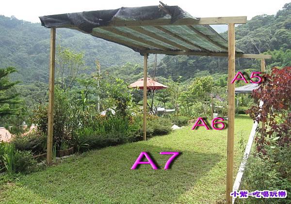 A7 (1).jpg