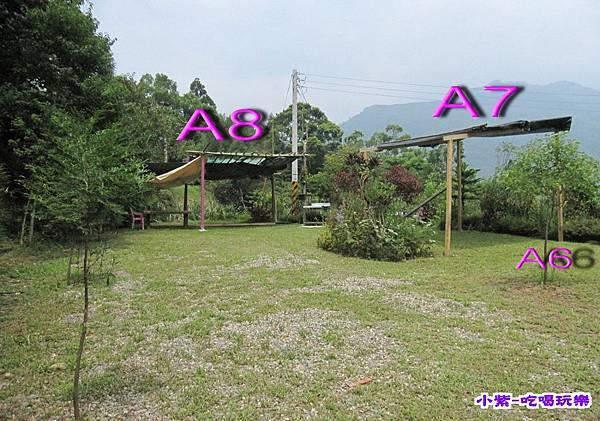 A8 (1).jpg