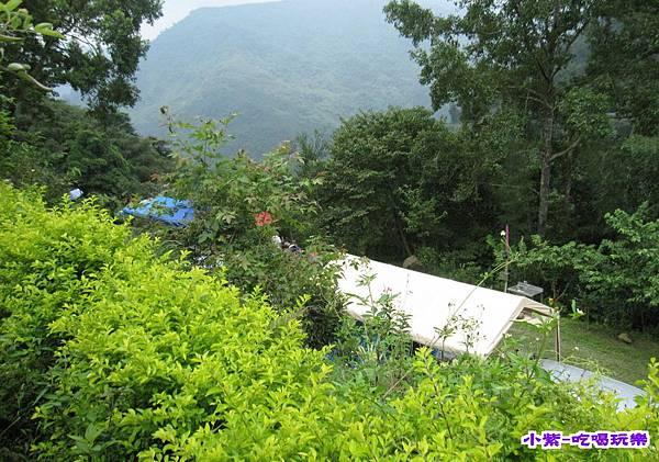 紫色的家露營區 (2).jpg
