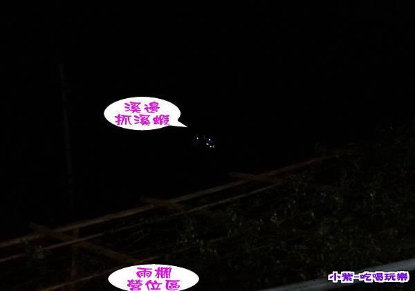 夜間抓溪蝦.jpg