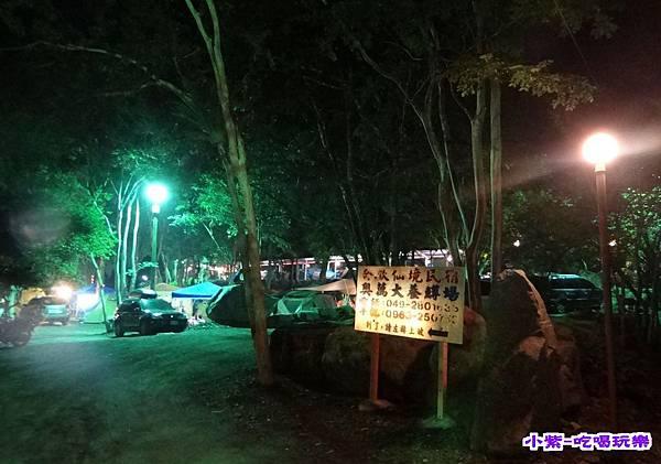 樹林區-夜色 (4).jpg