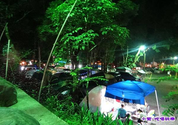 樹林區-夜色 (3).jpg