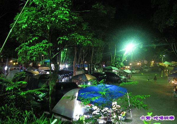 樹林區-夜色 (8).jpg