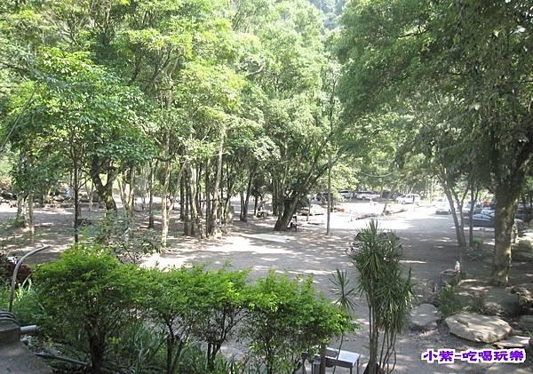 樹林區空景 (1).jpg