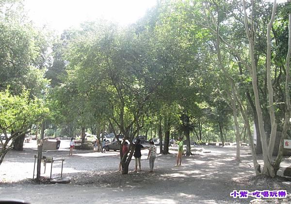 樹林區空景.jpg