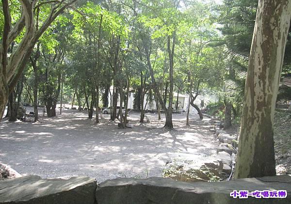 樹林區空景 (2).jpg