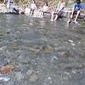 溪邊戲水(001).jpg
