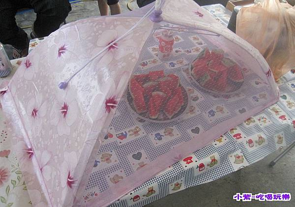 蚊帳 (2).jpg