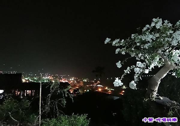 水鄉山岳夜景 (1).jpg