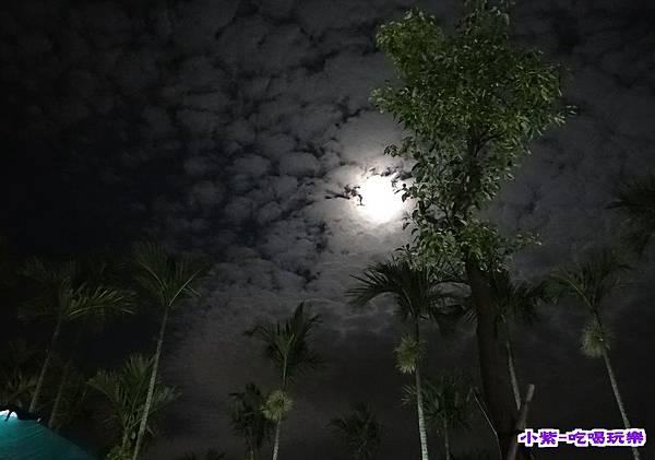 北山農場夜景 (10).jpg