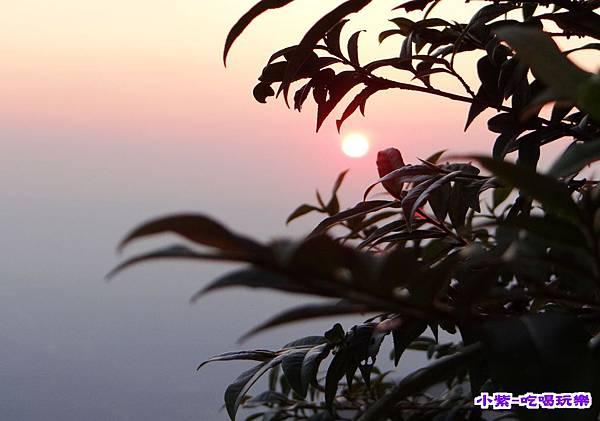 北山農場夜景 (4).jpg