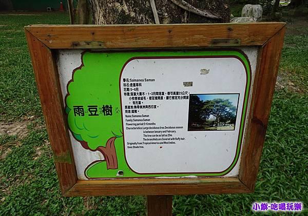 台中公園泰迪熊展 (63).jpg