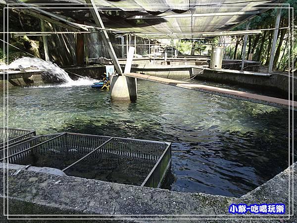 鴛鴦谷養殖農場 (12)P49.jpg