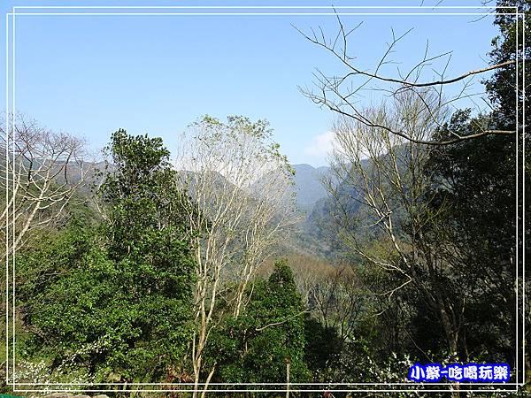 賞山景1P43.jpg