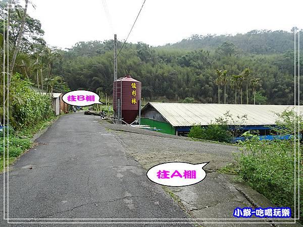 DSC0718430.jpg