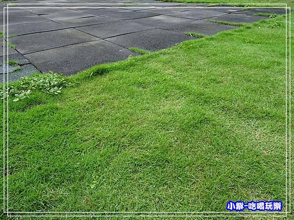 PU+草皮31.jpg