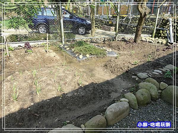 小菜園75.jpg