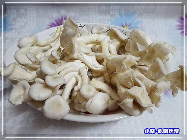 藍寶石菇.11.jpg