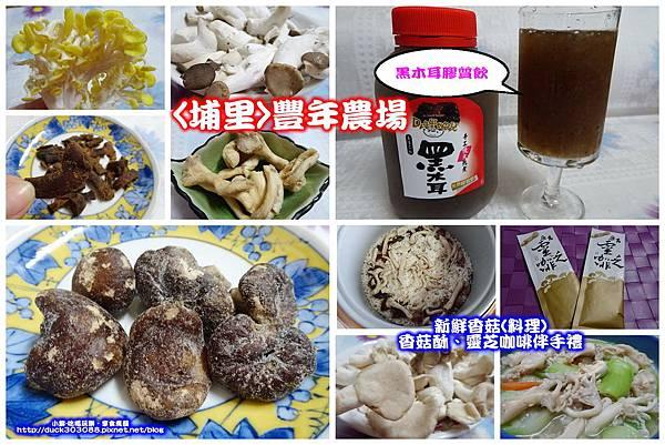 珊瑚菇料理 (4).jpg