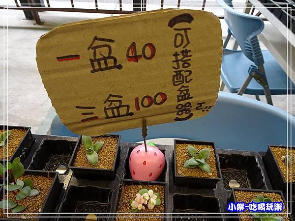 桃園假日農業創意市集 (36)27.jpg