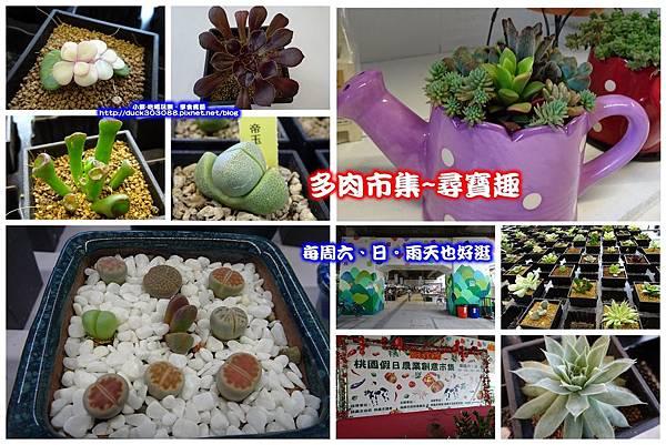 桃園假日農業創意市集-拼圖.jpg