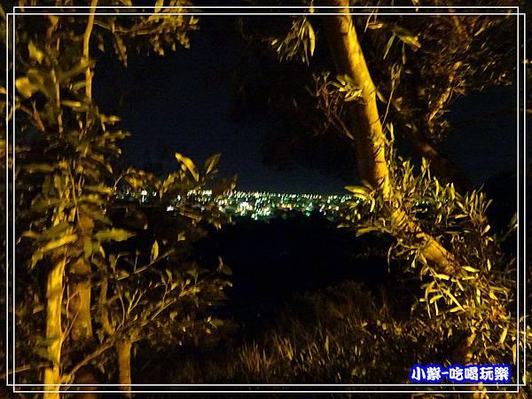 鰲峰山觀景平台 (14)9.jpg