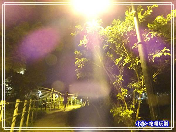 鰲峰山觀景平台 (15)10.jpg