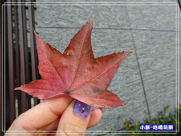 森林風呂泡湯 (10)6.jpg