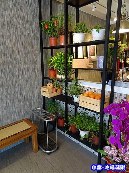 香草植物 (2)24.jpg