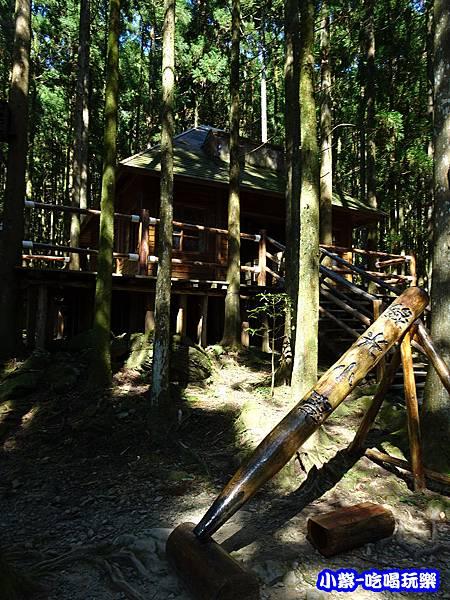 馬武督-綠光森林4.jpg