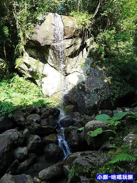 馬武督-綠光森林7.jpg