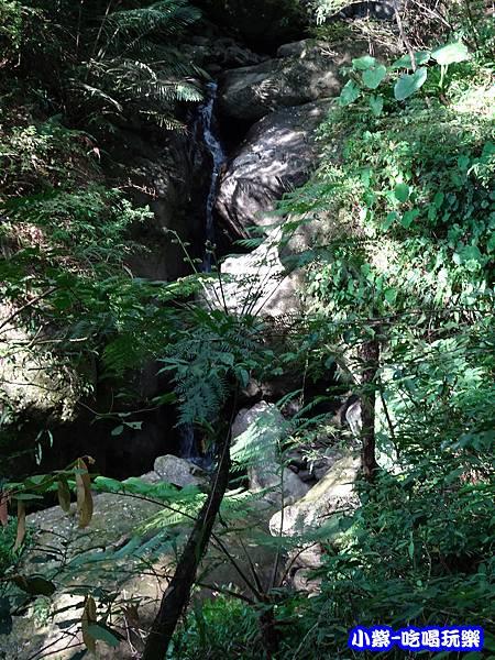 馬武督-綠光森林8.jpg