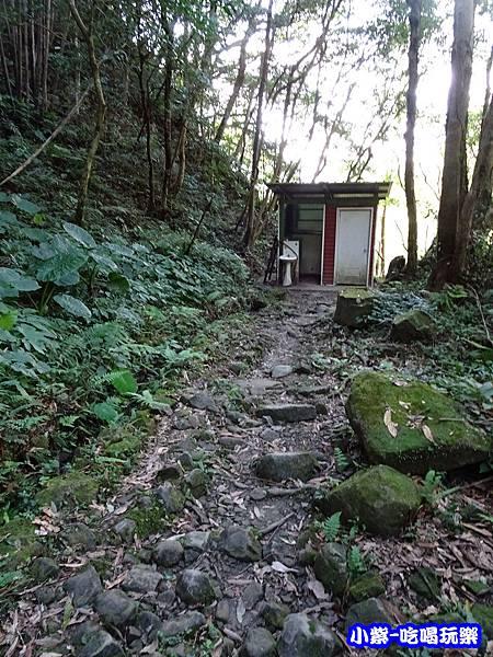 馬武督-綠光森林9.jpg
