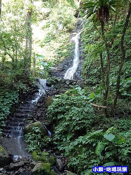 馬武督-綠光森林11.jpg