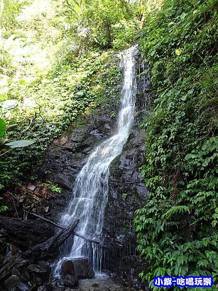 馬武督-綠光森林12.jpg
