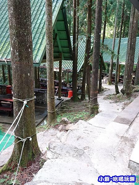 馬武督-綠光森林17.jpg