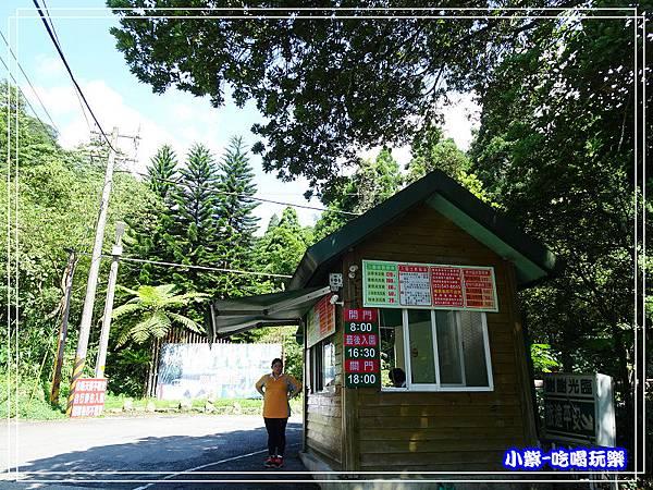 新竹-馬武督綠光森林 (5).jpg