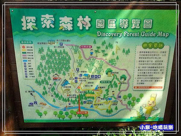 新竹-馬武督綠光森林 (12).jpg