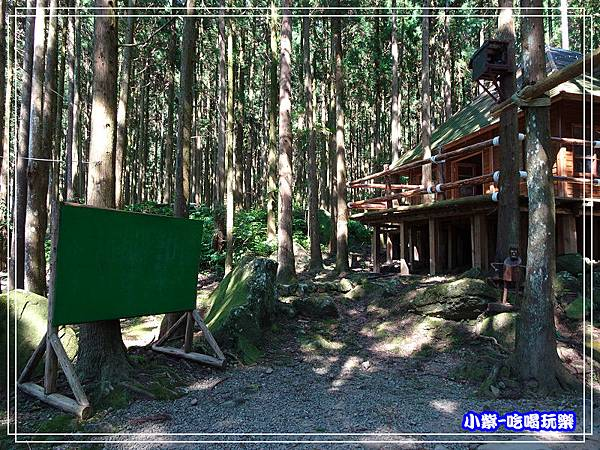 新竹-馬武督綠光森林 (17).jpg